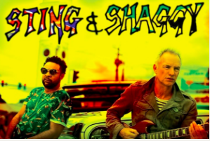Concert Sting & Shaggy